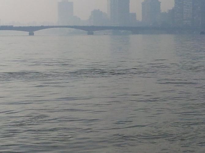 Im Smog